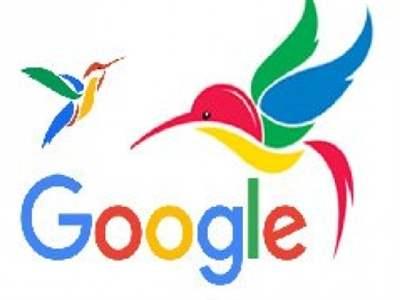 الگوریتم جدید گوگل : مرغ مگس خوار